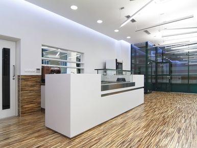 Transpetrol Bratislava - reception, corian interior tiles